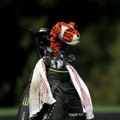 Tiger chooses to skip next week's Wells Fargo